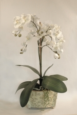 Artificial Silk Orchids in Pots
