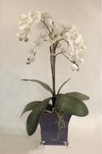 Amelia - artificial moth orchids - Artificial Flower Arrangement
