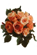 Rose bunch apricot - Artificial Flower Arrangement
