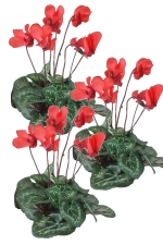 Cyclamen red 3 - Artificial Flower Arrangement