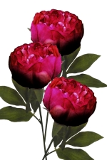 Peony Burgundy 3 - Artificial Flower Arrangement