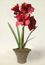 Skye  2 red amaryllis in napoli - Artificial Flower Arrangement