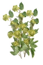 Hop Spray 3 - Artificial Flower Arrangement
