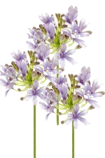 Agapanthus 3 - Artificial Flower Arrangement