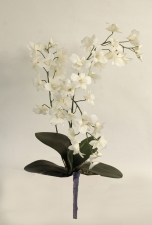 Orchid Dendrobium - Artificial Flower Arrangement