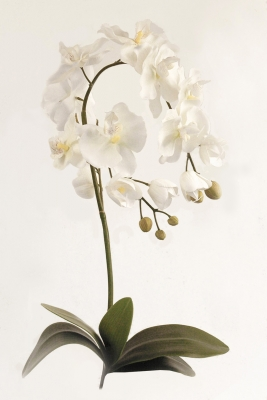 Orchid Phalaenopsis Large Artificial Flower Arrangement