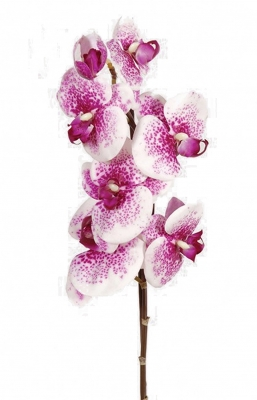 Orchid purple spotted Artificial Flower Arrangement