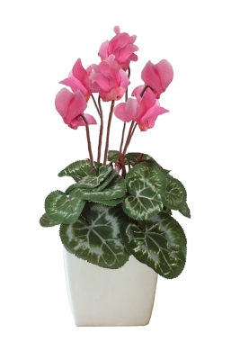 Bianca.  Silk cyclamen Artificial Flower Arrangement