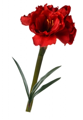 Amaryllis red with leaves Artificial Flower Arrangement