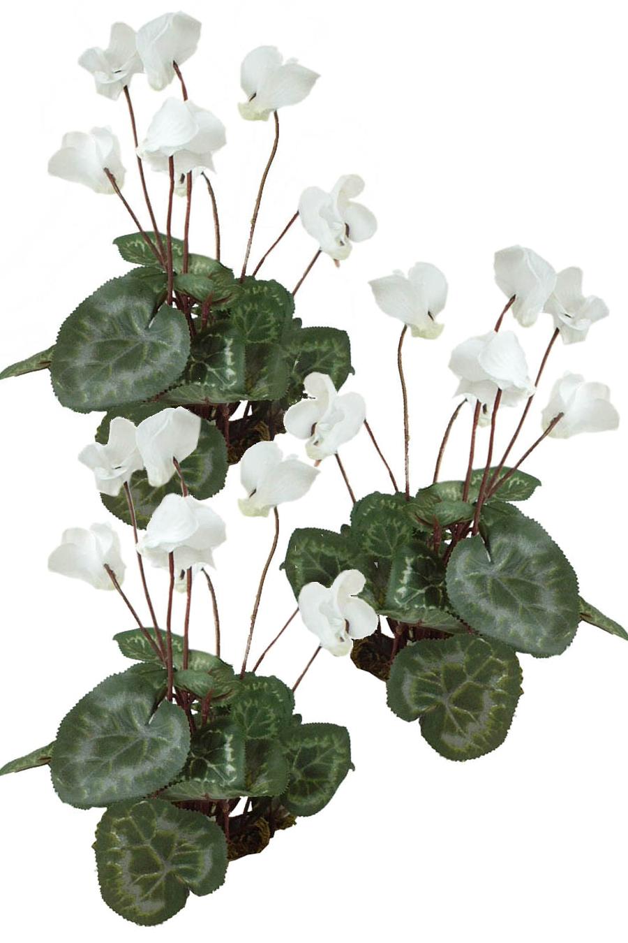 Cyclamen White 3 Silk Flowers Artificial Arrangements Pene Dene