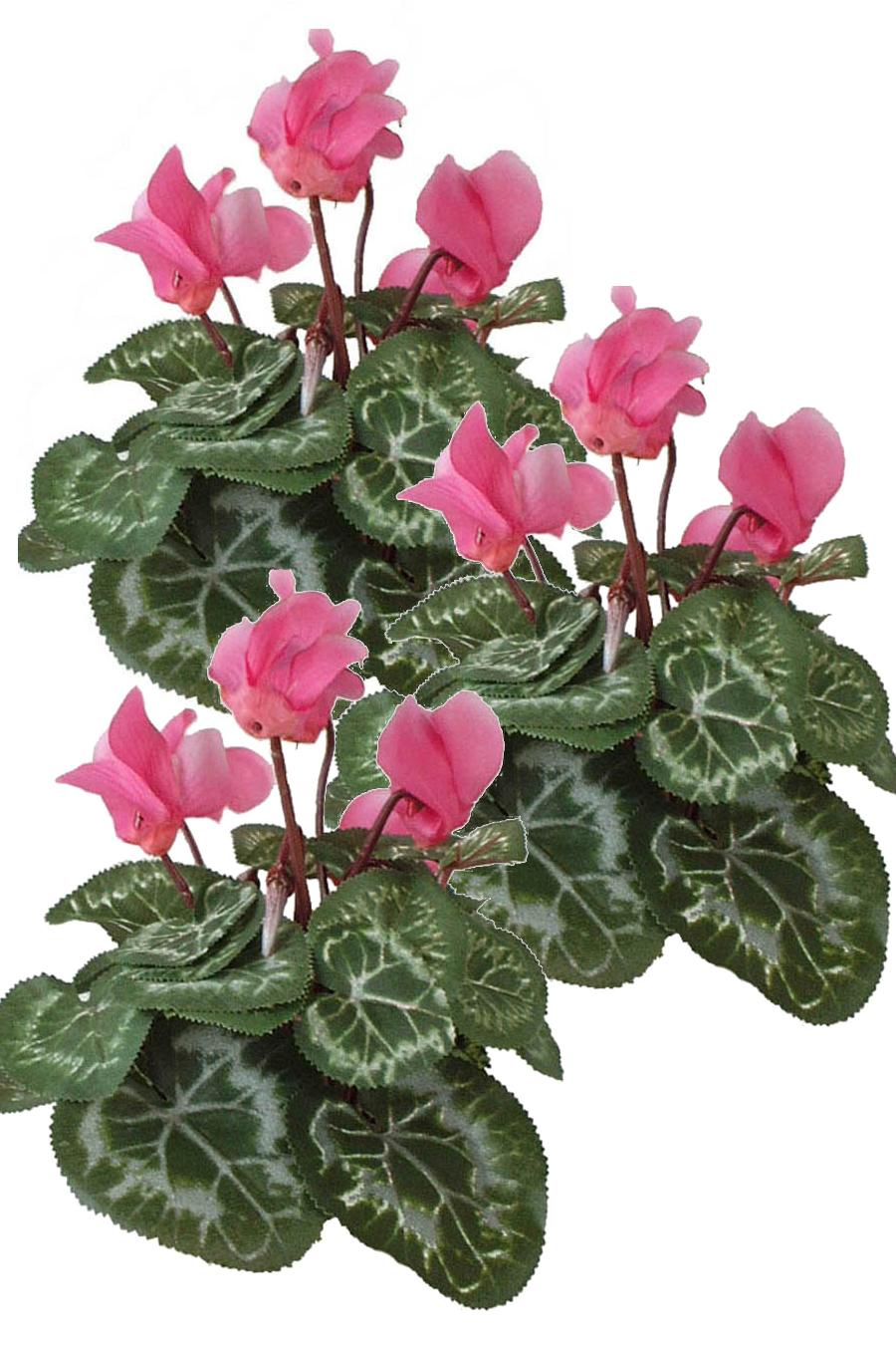 Cyclamen Pink 3 Silk Flowers Artificial Arrangements Pene Dene