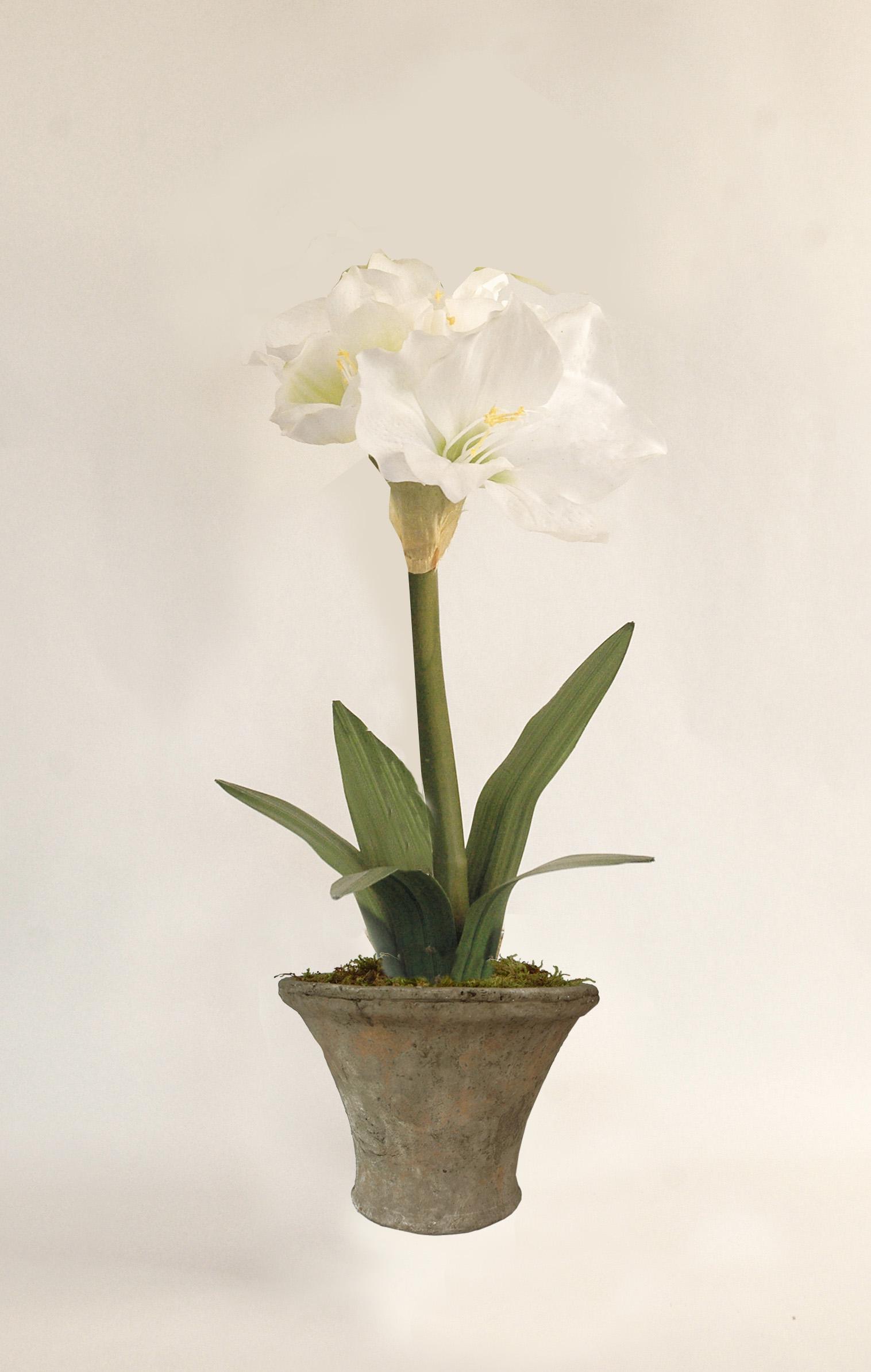 Rebecca Silk Flowers Artificial Arrangements Pene Dene Flowers