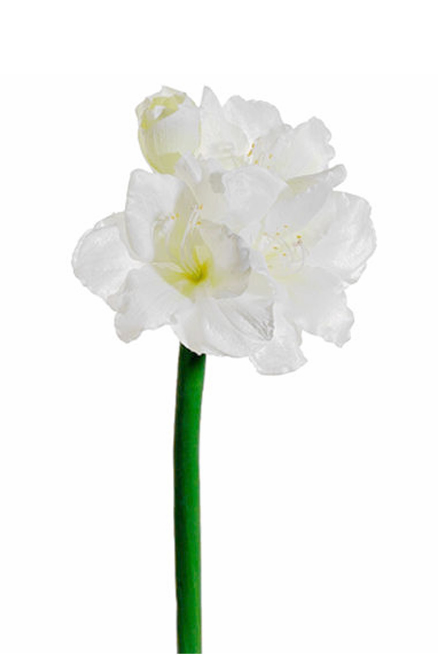 Amaryllis White Silk Flowers Artificial Arrangements Pene Dene