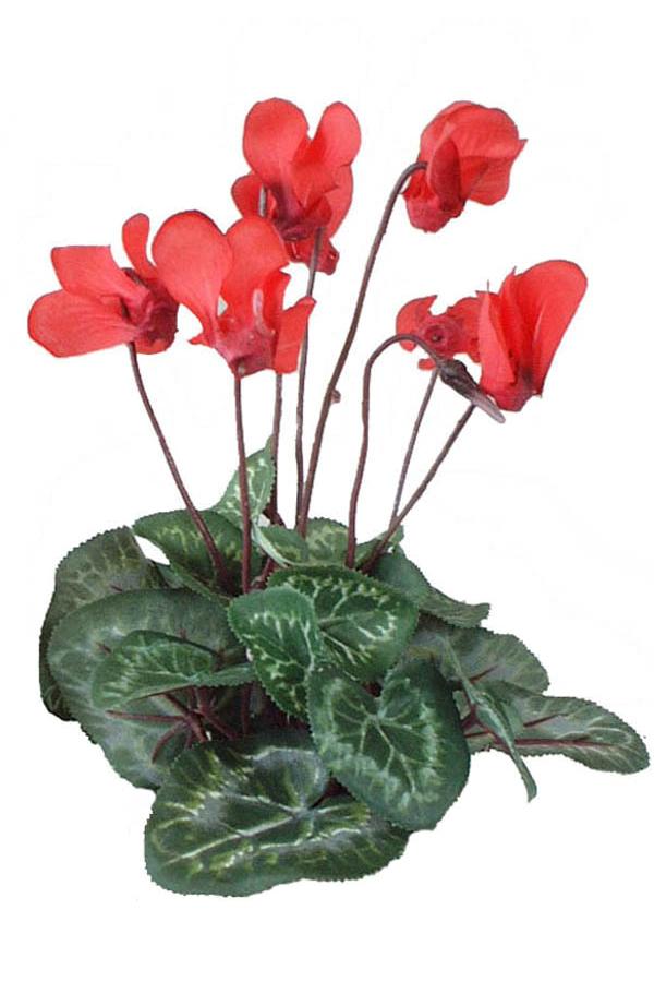 Cyclamen red 3 silk flowers artificial arrangements pene dene cyclamen red 3 silk flowers artificial flower arrangement mightylinksfo